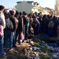 refugiados-presevo-camp-cola